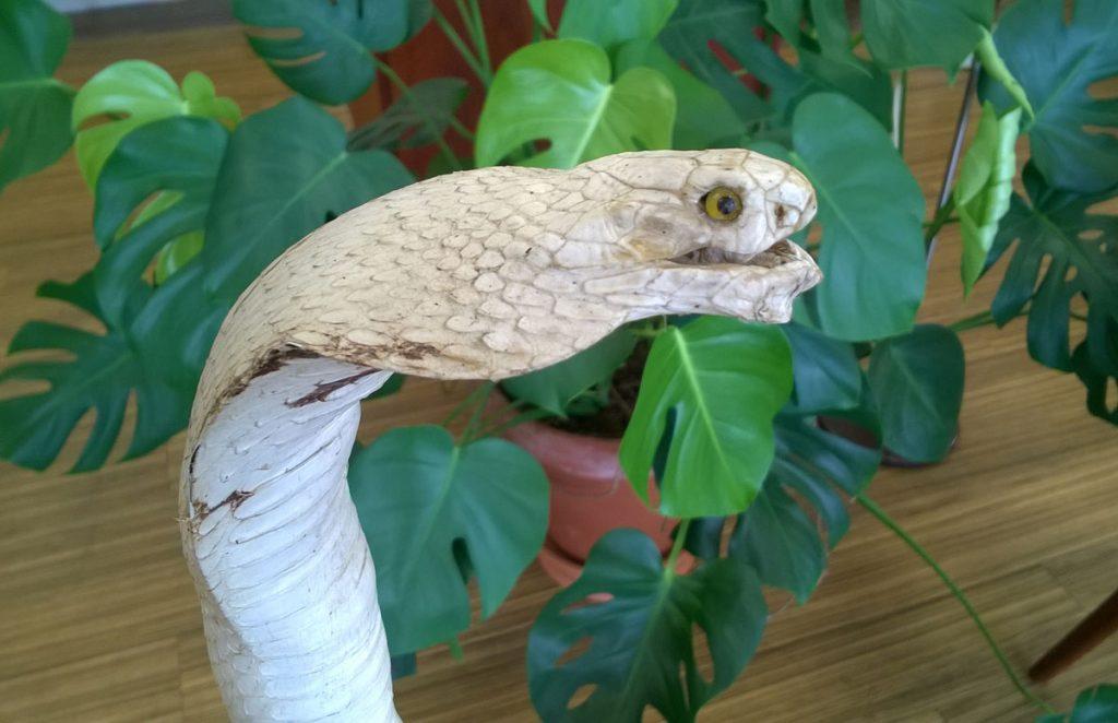 boligtilbehoer kobraslange udstoppet rift bagerst