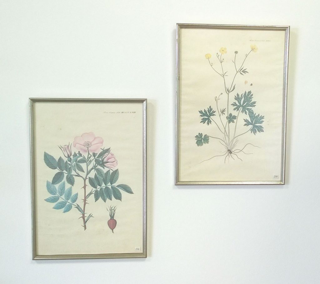 boligtilbehoer varia billeder flora 2stk